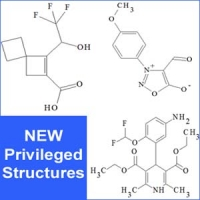 Privileged Structures: Mesoionic,  Aminomorpholines, and Dihydropyridines